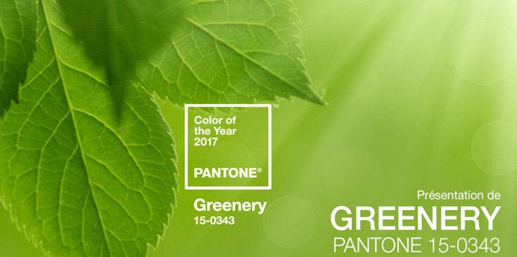 et-la-couleur-de-l-annee-2017-est-vert-greenery